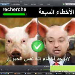 Ce Amrou Adib et son éventuelle reconciliation