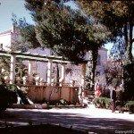 On aura tout vu  Par : Mustapha Mohammedi dans Chroniques 5618-sougueur-jardin-publique-150x150