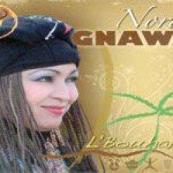 Nora illumine le gnawi   Par Kader Bakou