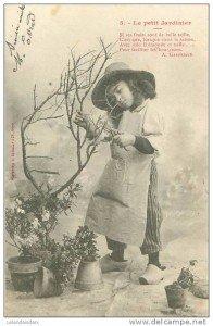Le jeune jardinier  jardinier-196x300