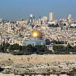 La Palestine oubliée par le printemps des Arabes ! par Bachir Ben Nadji