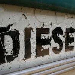 Diesel mortel et la vie est belle ! par Nassim Bouziani*